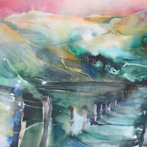 2012 - Piemont Crinzano Cavour - Weinstöcke<br> 56 x 38 cm